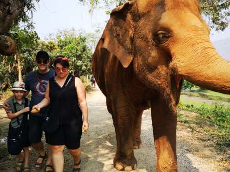 Famille marchant avec un éléphant